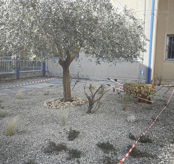 Un nuovo giardino